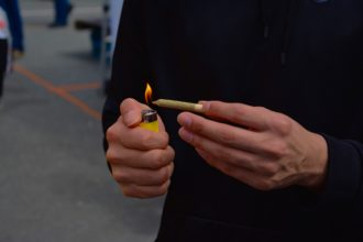 Uporabniki konoplje v največji svetovni raziskavi na področju drog poročajo o precej visokih stopnjah zasvojenosti s to drogo