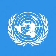 Združeni narodi izdali ključen dokument s področja preventive